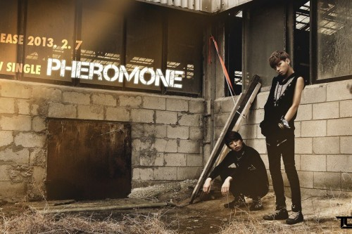 "(All Languages) [en][hu] Toxic to release digital single ""Pheromone"""