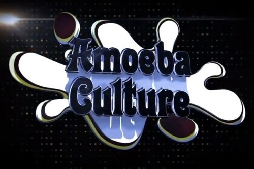 SURVEY: Amoeba Culture Concert in Budapest, Hungary